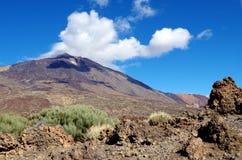 Volcano El teidemedborgare Parc, Tenerife Arkivbild