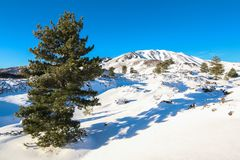 Volcano Etna in Snow, Catania Stock Photography
