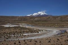 Volcano Guallatiri on the Altiplano of Chile Royalty Free Stock Image