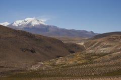 Volcano Guallatiri nel parco nazionale di Lauca, Cile immagini stock