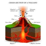 Volcano igneous eruption in the cross section. Education scientific scheme  Royalty Free Stock Photo