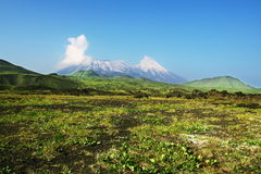 Volcano on Kamchatka Stock Photography