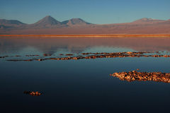 Volcano licancabur in a chilean lagoon Stock Photos