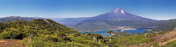 Volcano Llaima in Conguillio N P Chili - panorama Stock Foto