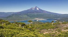 Volcano Llaima på Conguillio N P & x28; Chile& x29; Arkivfoton