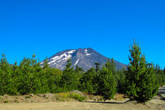 Volcano Lonquimay in Chile stock photos