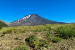 Volcano Lonquimay no Chile imagens de stock royalty free