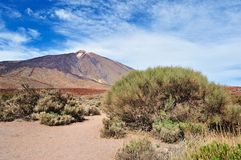 Volcano Teide Royalty Free Stock Photos
