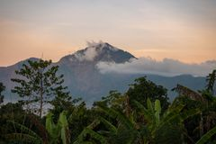 Volcano, mountain covered forest, sky with clouds, traces of lava on the ground. Mount Batur Volcano in Kintamani stock images