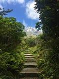 Volcano Mt Taranaki durante il mezzogiorno fotografia stock