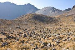 Volcano Nevada de Toluca, Messico Fotografia Stock Libera da Diritti