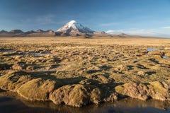 Volcano Nevado Sajama Photographie stock
