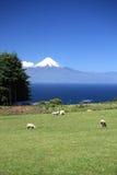 Volcano Osorno en Chile fotos de archivo libres de regalías