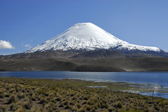 Volcano Parinacota and lake Chungara Royalty Free Stock Photo