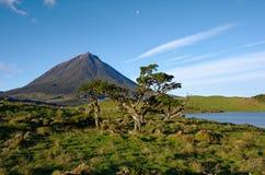 Volcano Pico Azores härligt landskap arkivbilder