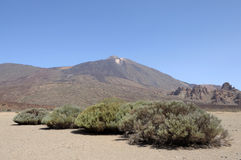 Volcano Pico de Teide, Tenerife Royalty Free Stock Photo