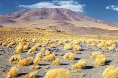 Volcano in red lagoon Red Lake, Eduardo Avaroa Andean Fauna Na. Tional Reserve, Bolivia Stock Image