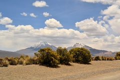 Volcano in Sajama National Park, Andes, Bolivia Stock Image