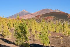 Volcano Samara nationalpark Pico del Teide royaltyfria foton