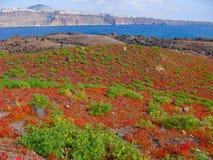 Volcano of Santorini in Greece Thirasia Stock Image