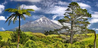 Volcano Taranaki, Neuseeland - HDR-panoramaVolcano Taranaki, Neuseeland - HDR-Panorama Stockfotografie