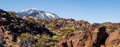 Volcano Teide Stock Photos