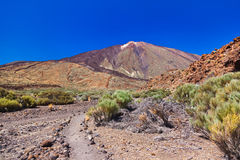 Volcano Teide in Tenerife island - Canary Stock Photography