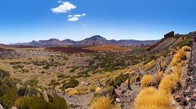 Volcano Teide in Tenerife island - Canary Royalty Free Stock Photos