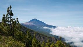 Volcano Tenerife Photo stock