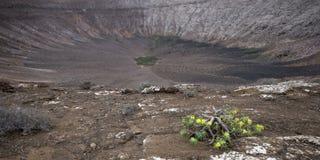 Volcanoe cater. View into volcanoe crater, Lanzarote royalty free stock photo
