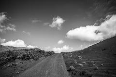 Volcanoe landscape in Lanzarote. Canary Islands, Spain Royalty Free Stock Photo