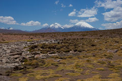 Volcanoes on the Altiplano. Snow and ice covered peaks of the volcanoes Parinacota (6342m) and Pomerape (6240m), tower above the altiplano in Lauca National Park Stock Photos