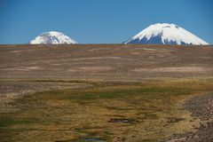 Volcanoes on the Altiplano. Snow and ice covered peaks of the volcanoes Parinacota (6342m) and Pomerape (6240m), tower above the altiplano in Lauca National Park Stock Photography