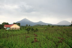 Volcanoes in Kisoro, Uganda Royalty Free Stock Image