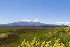 Volcanoes landscape Stock Photos