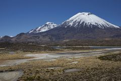 Volcanoes in Lauca National Park. Volcanoes Parinacota and Pomerape in Lauca National Park high on the Altiplano of northern Chile. In the foreground lakes known Stock Photo