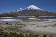 Volcanoes in Lauca National Park. Volcanoes Parinacota and Pomerape in Lauca National Park high on the Altiplano of northern Chile. In the foreground lakes known Royalty Free Stock Photos