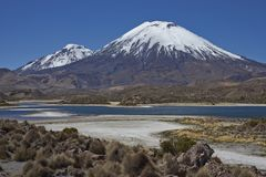 Volcanoes in Lauca National Park. Volcanoes Parinacota and Pomerape in Lauca National Park high on the Altiplano of northern Chile. In the foreground lakes known Stock Photos