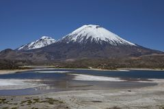 Volcanoes in Lauca National Park. Volcanoes Parinacota and Pomerape in Lauca National Park high on the Altiplano of northern Chile. In the foreground lakes known Royalty Free Stock Images
