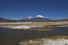 Volcanoes in Lauca National Park. Volcanoes Parinacota and Pomerape in Lauca National Park high on the Altiplano of northern Chile Royalty Free Stock Image