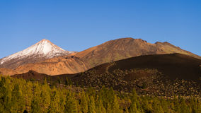 Volcanoes of Tenerife Royalty Free Stock Photos