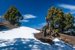 Volcanoes trasy losu angeles Palmy wyspy kanaryjska, Hiszpania Obrazy Royalty Free