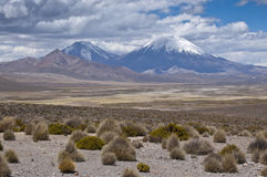 Volcanos at Andes. Parinacota and Pomerape volcanos (Lauca National Park, Chile Stock Image