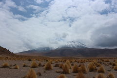 Volcanos in the Atacama Desert. Snowy Volcanos in the Atacama Desert near the border of Bolivia and Chile Stock Image