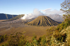 Volcanos in caldera. And trees on the slope royalty free stock photography