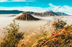 Volcanos Mount Semeru and Bromo in East Java. Indonesia, Southeast Asia royalty free stock photo