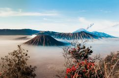 Volcanos Mount Semeru and Bromo in East Java. Indonesia, Southeast Asia stock photo