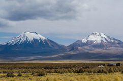 Volcanos. Nature of Altiplano, Bolivia, South America Stock Photography