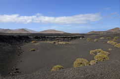 Volcanos in the Timanfaya National Park, Lanzarote Stock Images
