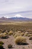 Volcans dans les montagnes du Chili Image stock